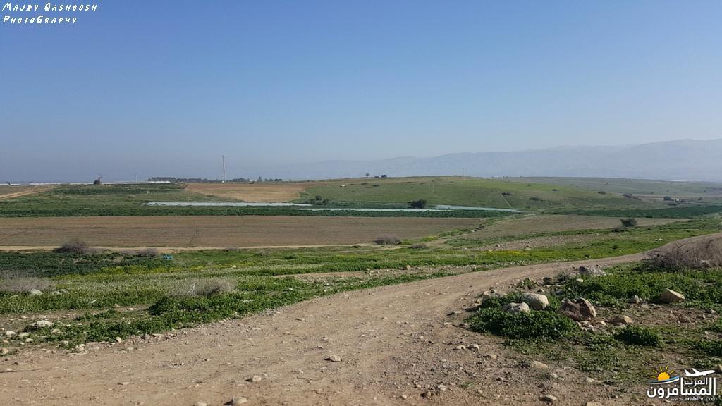 642841 المسافرون العرب الأغوار الشمالية - فلسطين