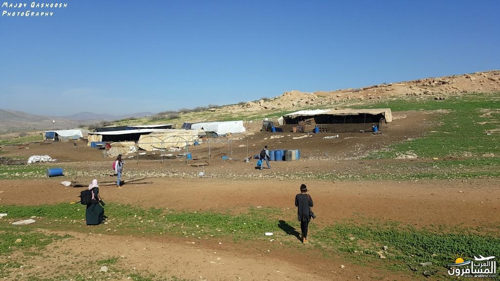 642844 المسافرون العرب الأغوار الشمالية - فلسطين