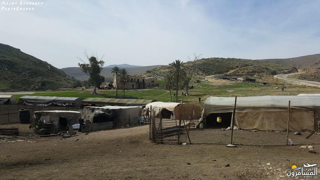 642865 المسافرون العرب الأغوار الشمالية - فلسطين
