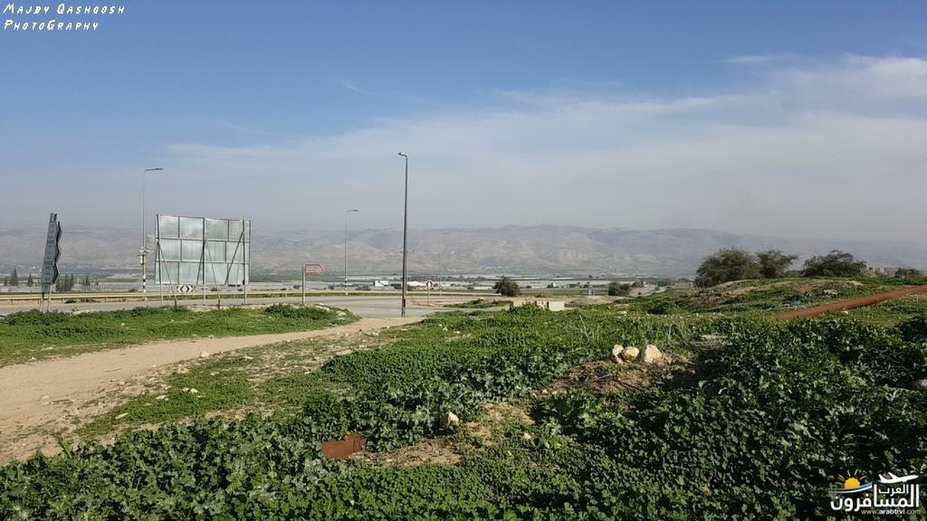 642871 المسافرون العرب الأغوار الشمالية - فلسطين