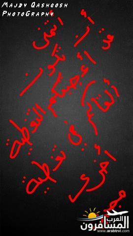 arabtrvl1453997806037.jpg