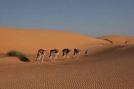 643124 المسافرون العرب موريتانيا جمال طبيعتها الصحراوي