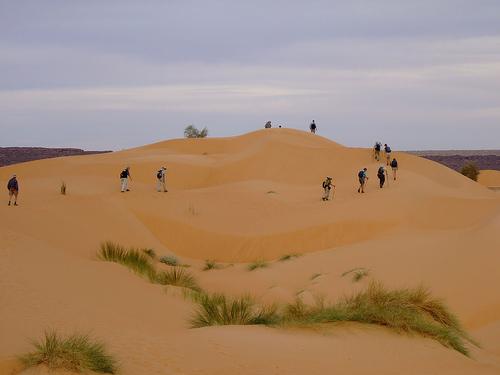 643126 المسافرون العرب موريتانيا جمال طبيعتها الصحراوي