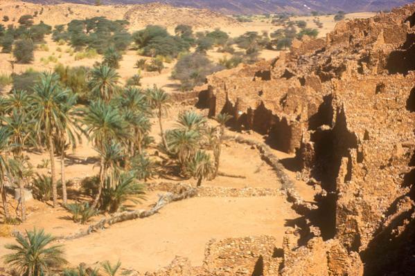 643131 المسافرون العرب موريتانيا جمال طبيعتها الصحراوي