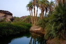 643139 المسافرون العرب موريتانيا جمال طبيعتها الصحراوي