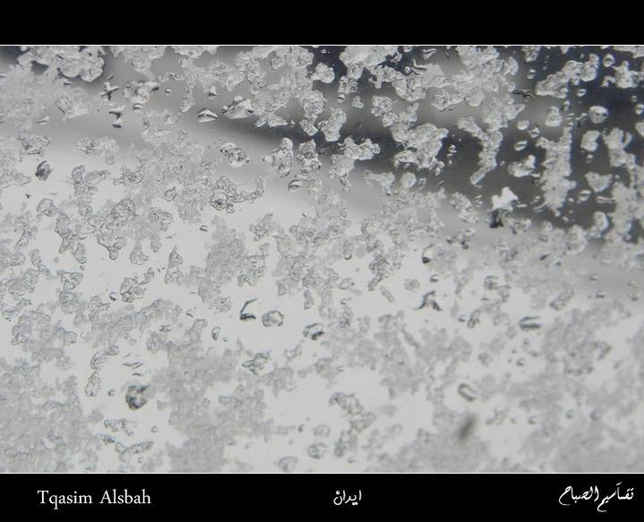 644017 المسافرون العرب الجمهوريه الاسلاميه ايران