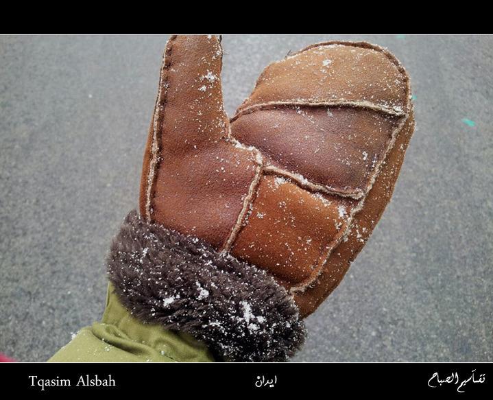 644142 المسافرون العرب الجمهوريه الاسلاميه ايران