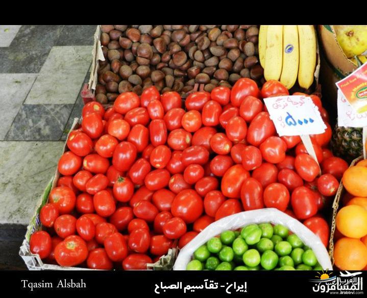 644227 المسافرون العرب الجمهوريه الاسلاميه ايران