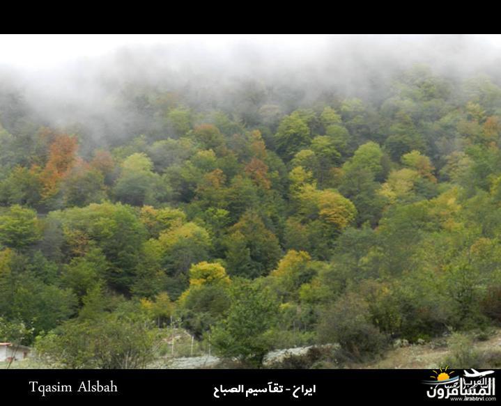 644280 المسافرون العرب الجمهوريه الاسلاميه ايران