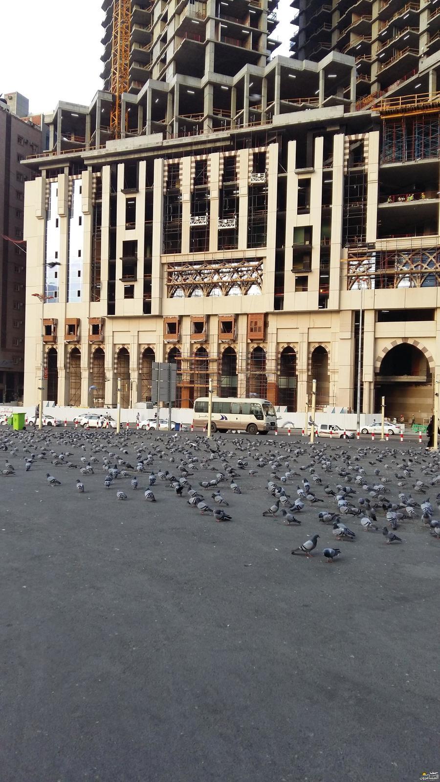 655116 المسافرون العرب نبذة عن الميقات