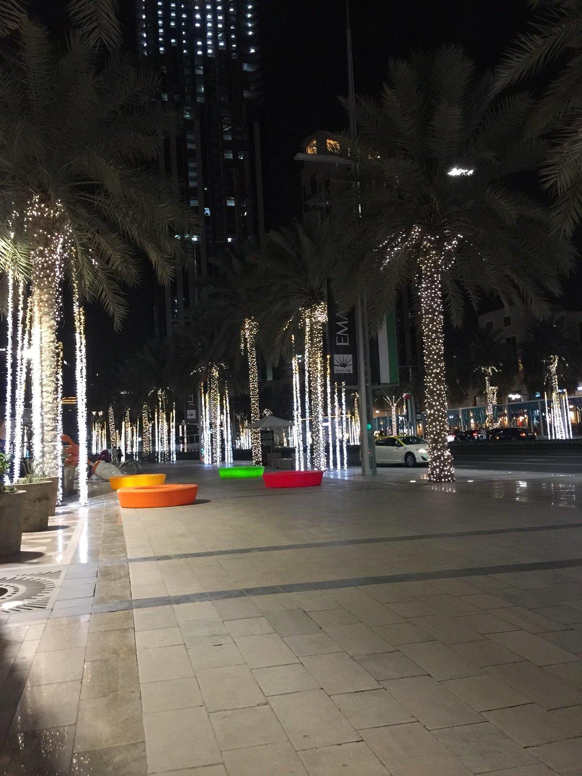 661534 المسافرون العرب دبي مدينة الجميرا