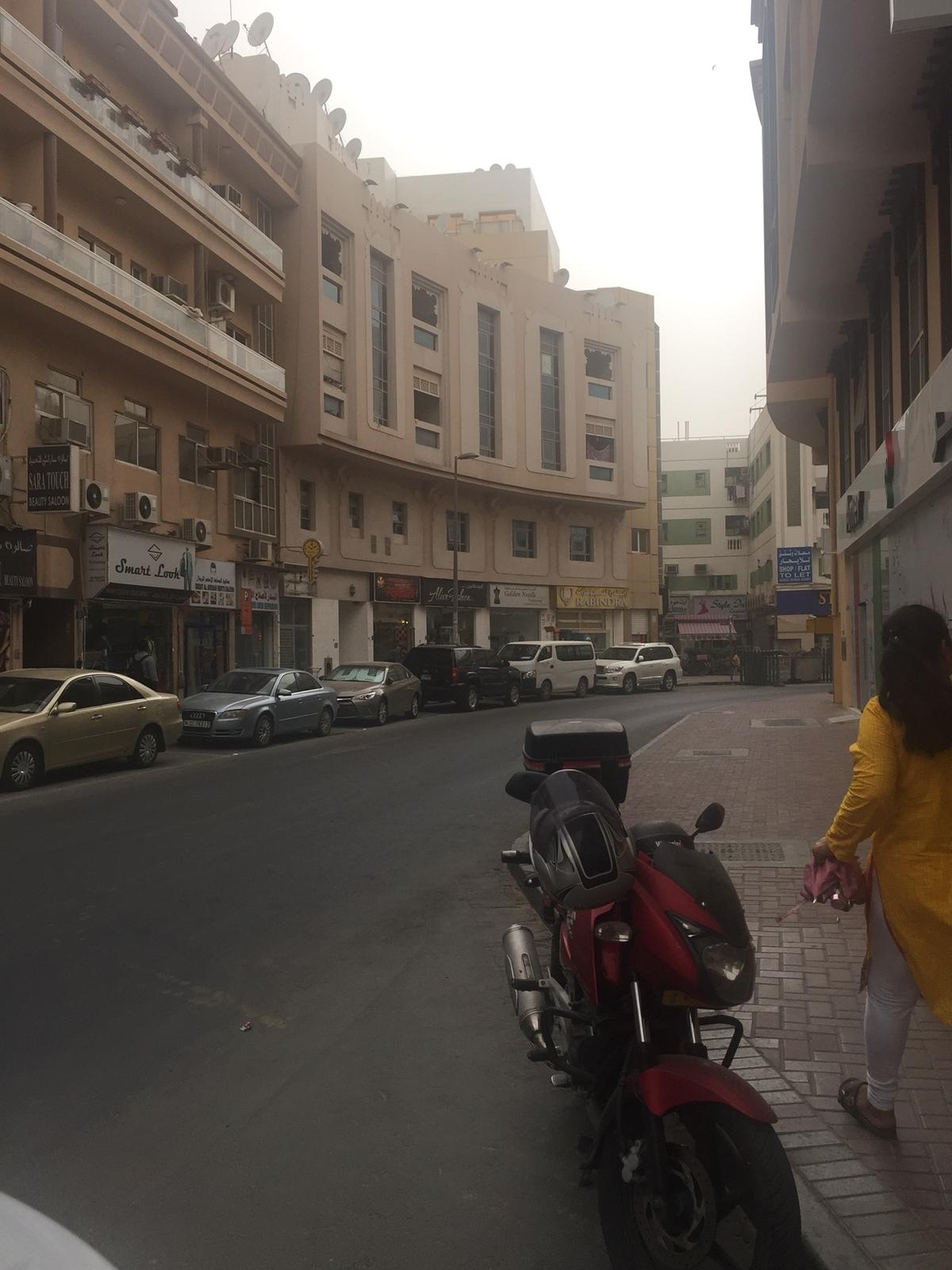 661564 المسافرون العرب دبي مدينة الجميرا