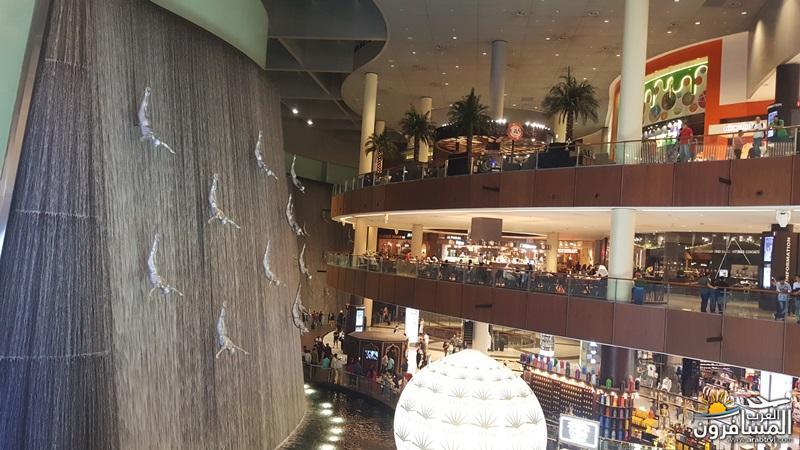 663534 المسافرون العرب مطار دبي الدولي