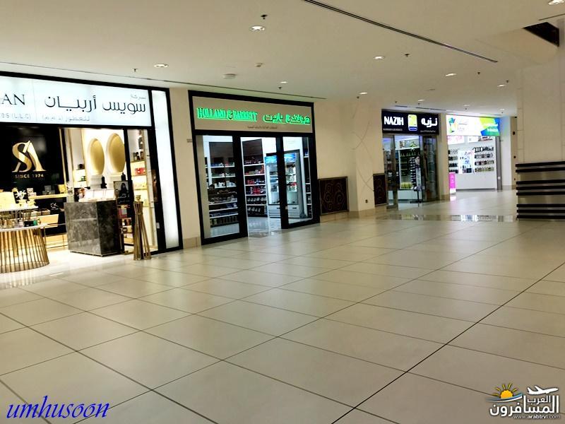 arabtrvl1487265230196.jpg