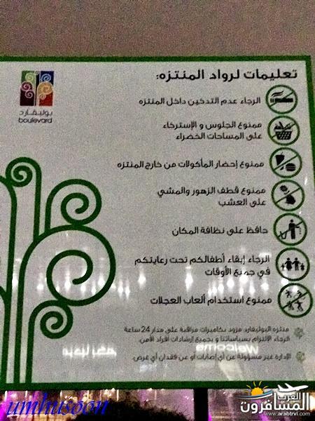 arabtrvl1487415436418.jpg