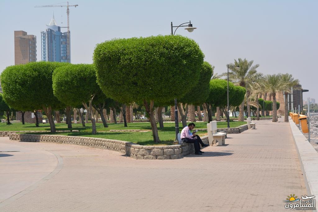 arabtrvl1502698563635.jpg