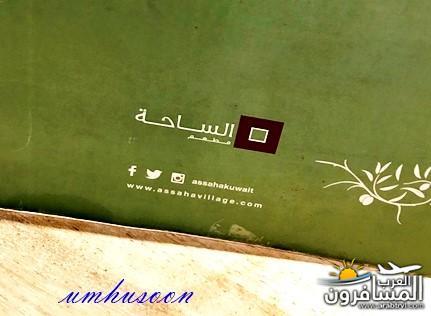 arabtrvl1531241965662.jpg