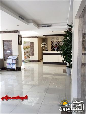 arabtrvl1520325649173.jpg
