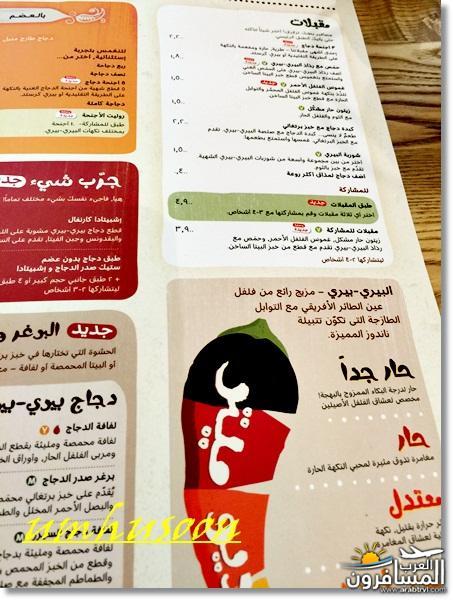 arabtrvl1455033930210.jpg