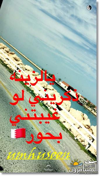 arabtrvl1455039198592.png