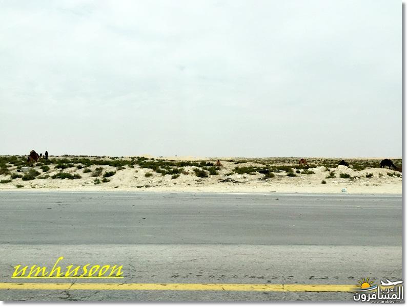 arabtrvl14550391991510.jpg