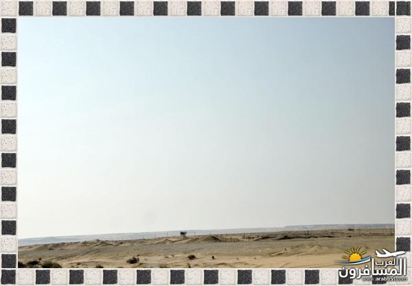 arabtrvl14557351256410.jpg