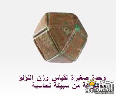 arabtrvl1512383374916.jpg