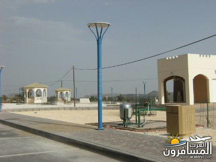 arabtrvl1449780876581.jpg