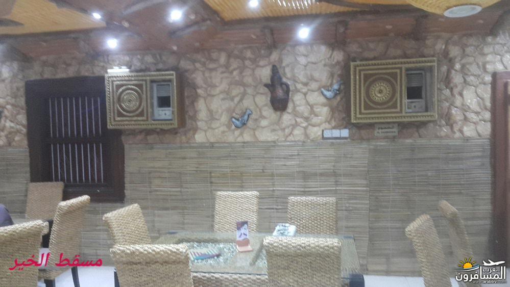 arabtrvl1450089430115.jpg