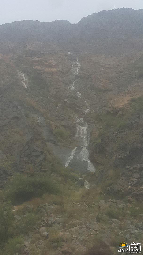 الجبل الأخضر-684347
