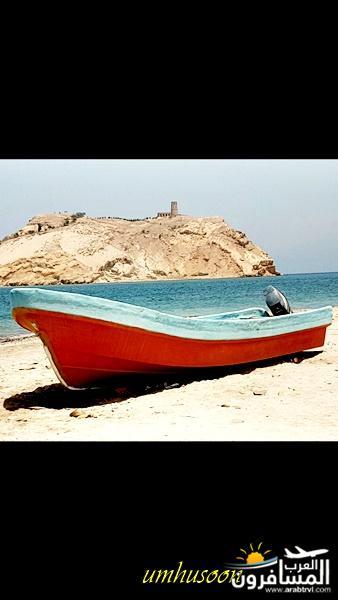685436 المسافرون العرب ولاية نزوى