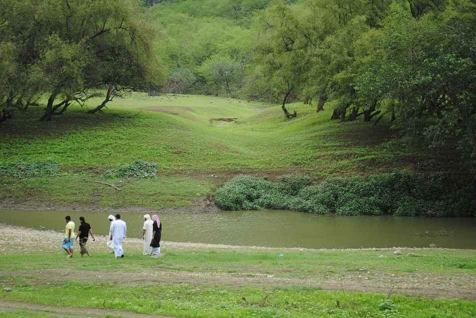 685495 المسافرون العرب السياحة في صلالة