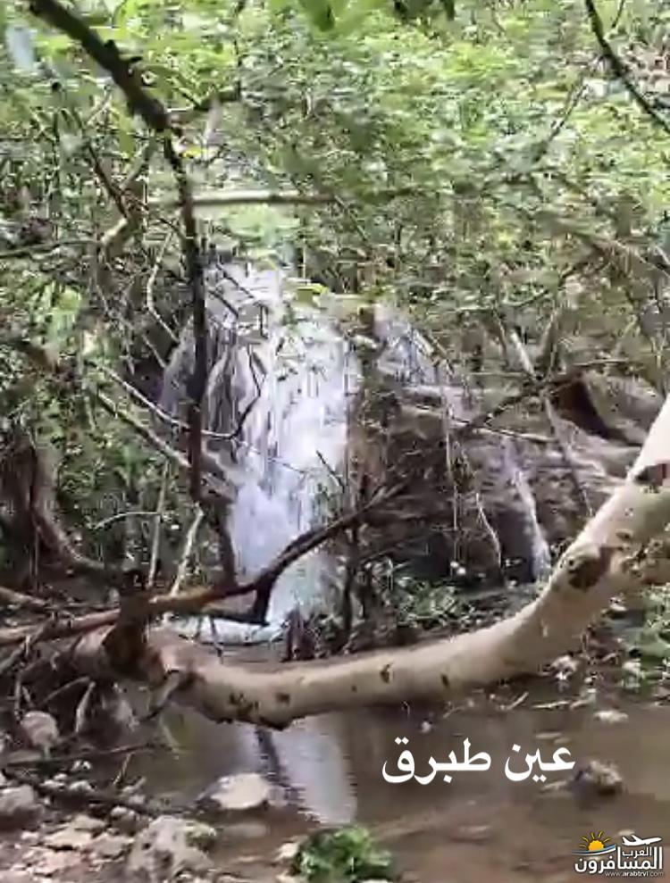 685526 المسافرون العرب موسم خريف ظفار