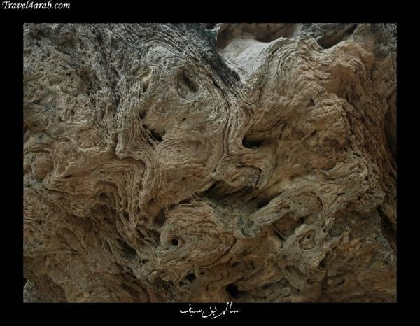 صورة علم و شعار سـلـطـنــة عـمــان 685873 المسافرون العرب