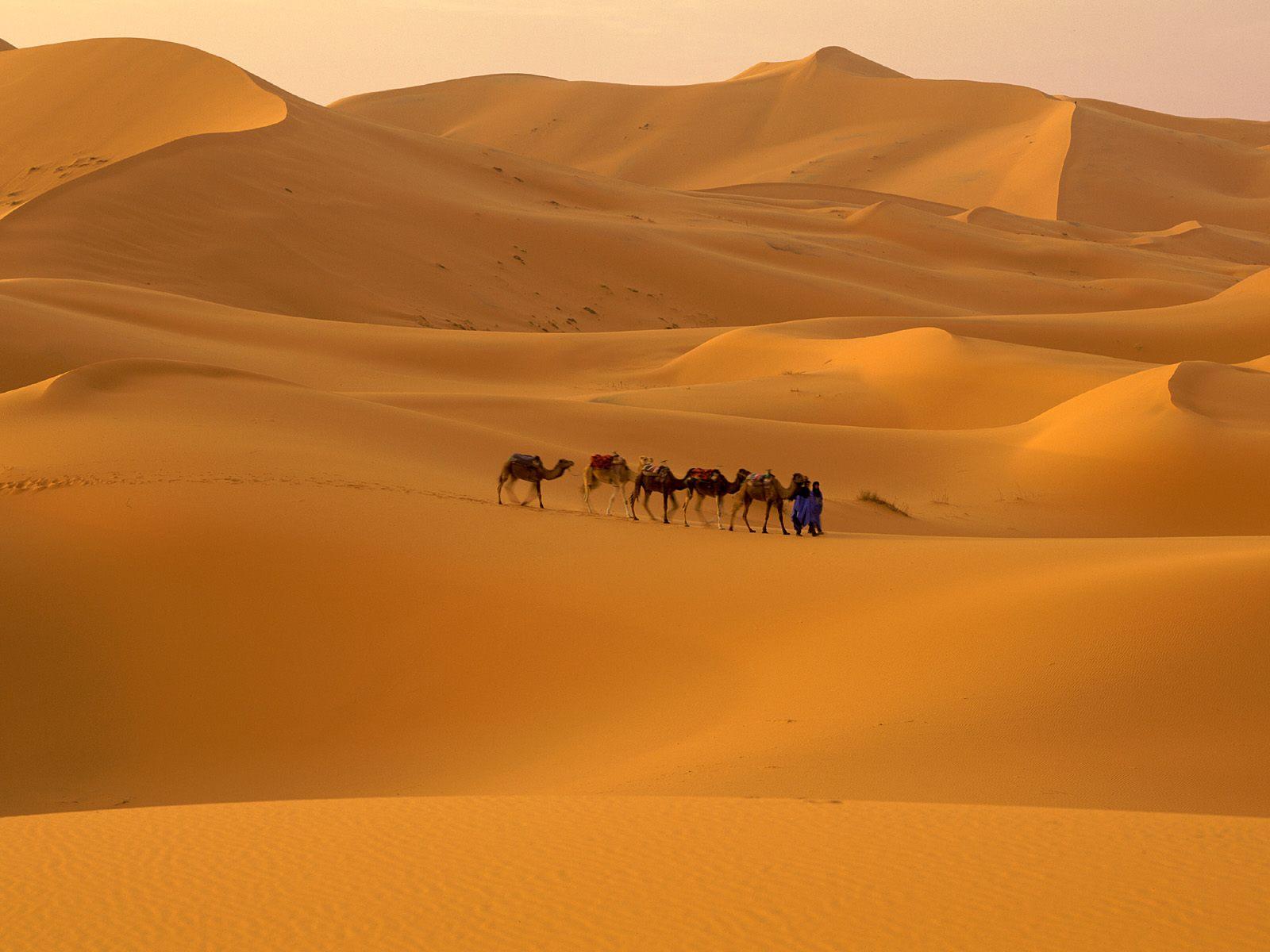 Sahara-Desert-Morocco1.jpg