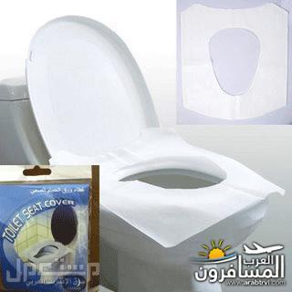 arabtrvl1484555689717.jpg