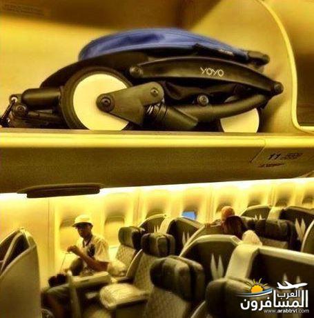 اكسسوارات متعلقه بالطعام 687563 المسافرون العرب