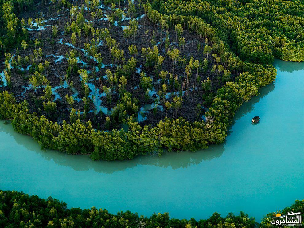 فتاة تسبح إلى الأعلى في المياه البلورية 687752 المسافرون العرب