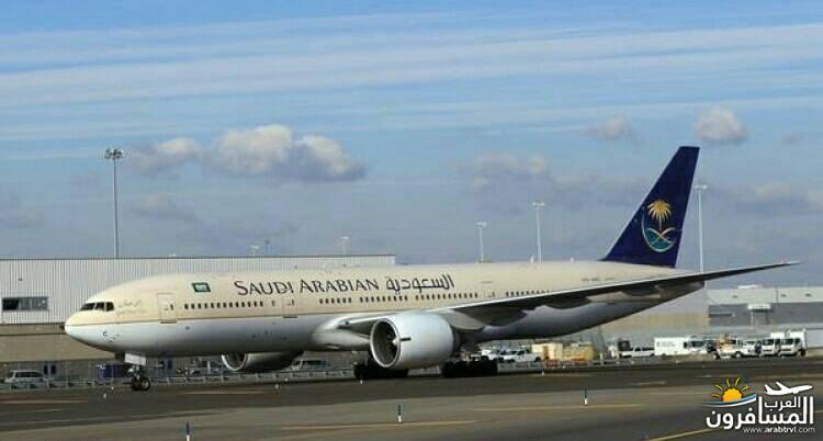 688158 المسافرون العرب أفضل مقعد في الطائرة
