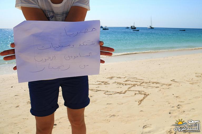 689351 المسافرون العرب جزيرة زنـجـبـار