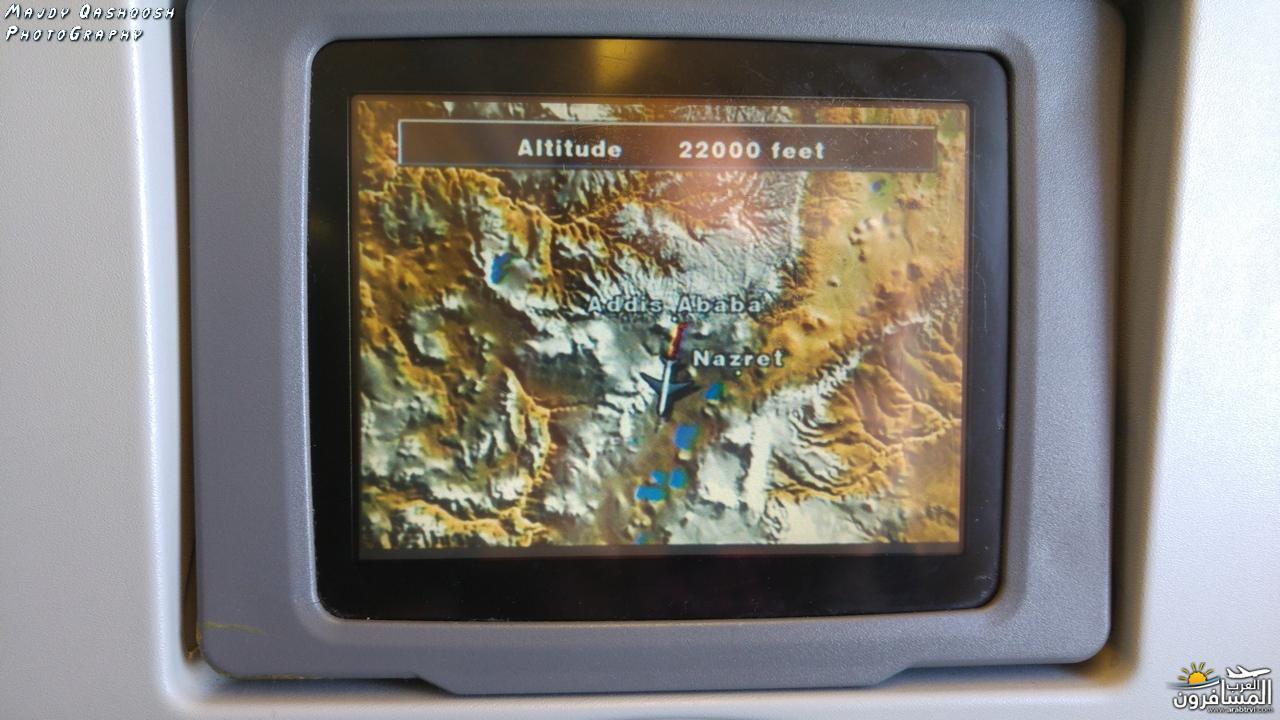 689538 المسافرون العرب جزيرة زنـجـبـار
