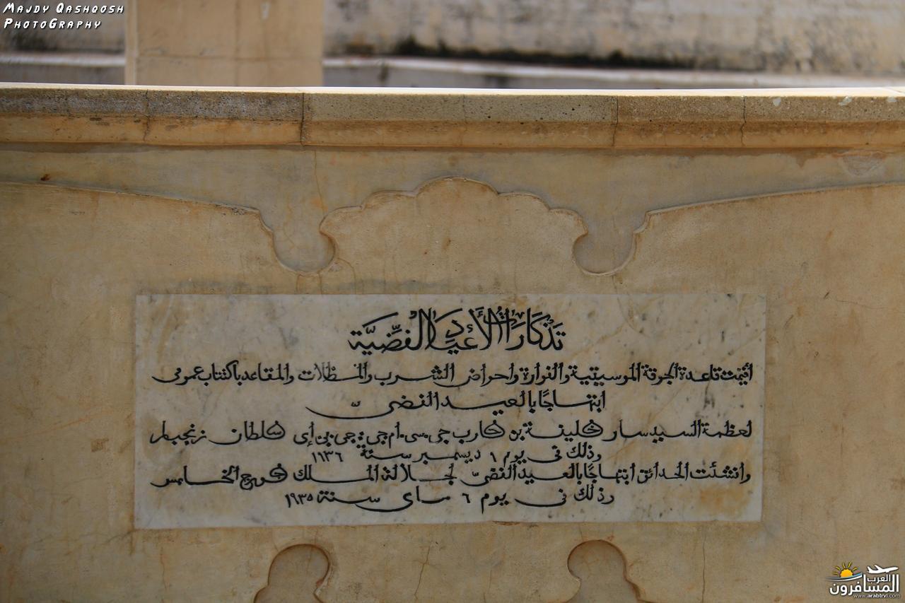 689635 المسافرون العرب جزيرة زنـجـبـار