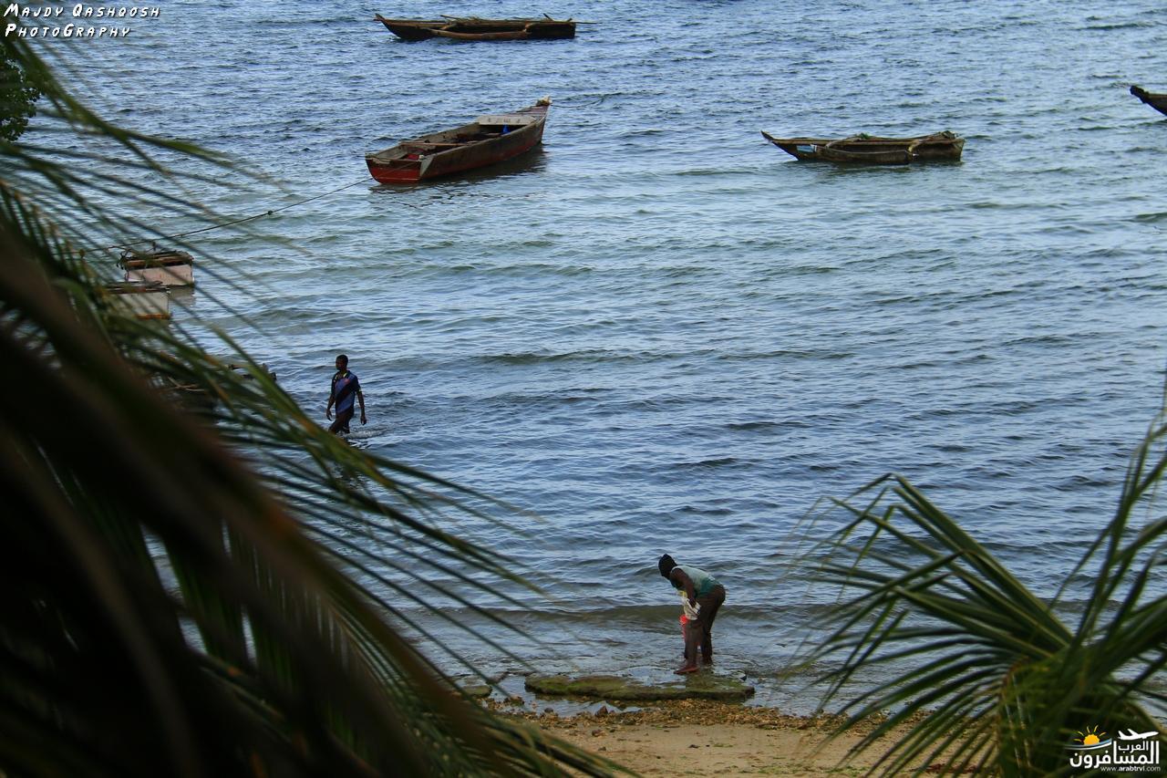689857 المسافرون العرب جزيرة زنـجـبـار