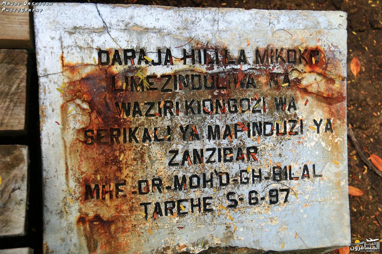 690294 المسافرون العرب جزيرة زنـجـبـار