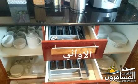 691753 المسافرون العرب جزيرة موريشيوس بلاد الأبتسامة والسكر