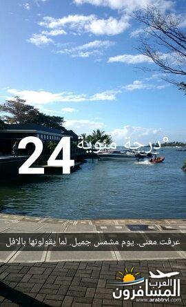 691762 المسافرون العرب جزيرة موريشيوس بلاد الأبتسامة والسكر