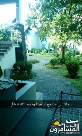 arabtrvl1468677794365.jpg