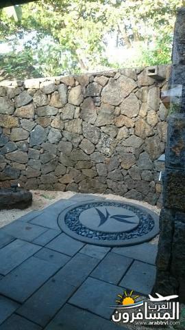 جزيرة موريشيوس بلاد الأبتسامة والسكر-691815