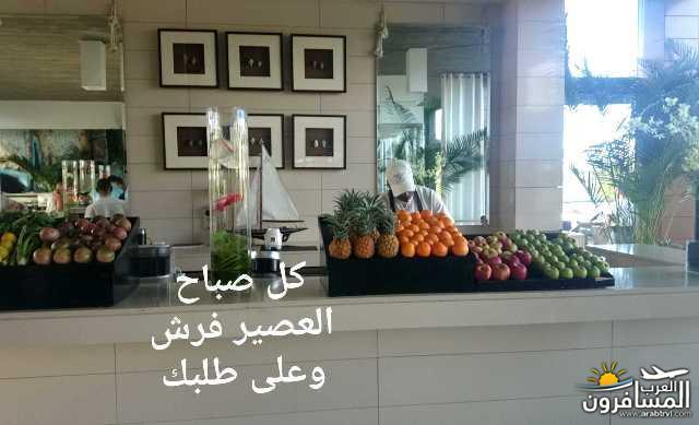 arabtrvl1469022295813.jpg