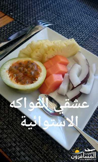 691914 المسافرون العرب جزيرة موريشيوس بلاد الأبتسامة والسكر